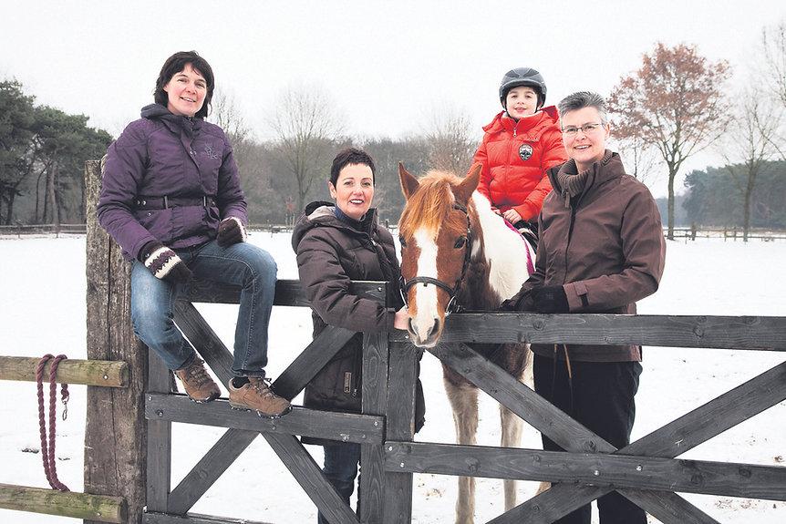 Horse and Wisdom - Therapie met paarden - Manege op de Berg - Paarden - Autisme - Hulpverlening - Eetstoornissen - Horse - Therapy - Limburg - Coaching - Spiegelen