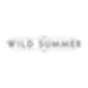 logo_wildsummer_visionr.png