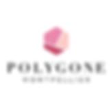 logo_polygone_visionr.png