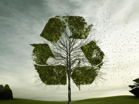 How To Effectively Tell Your Brand's Sustainability/ESG Story