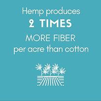 Hemp+produces+2+TIMES+MORE+FIBER+per+acr