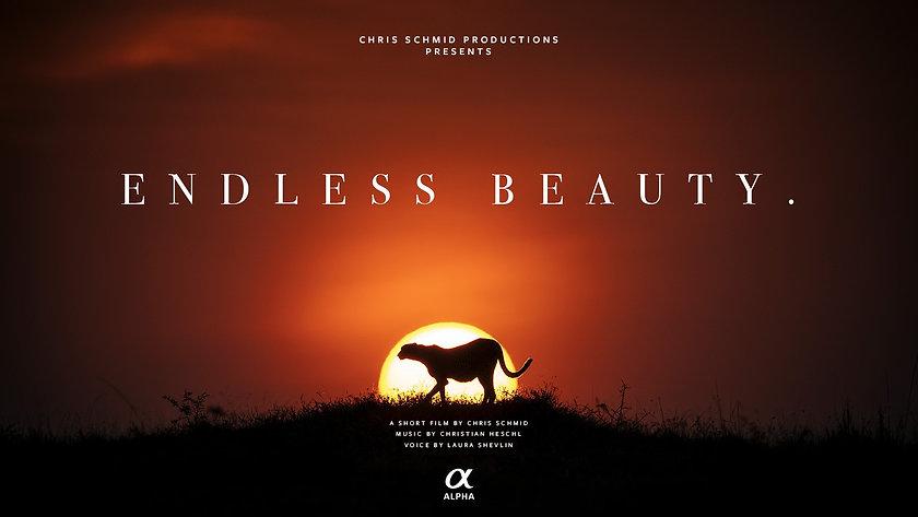 Endless Beauty wide.jpg