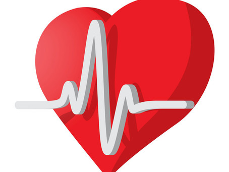 Heart Rate Zones (HRZ) - What is it and how do you use it?