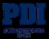 pdi_2-removebg-preview_edited.png