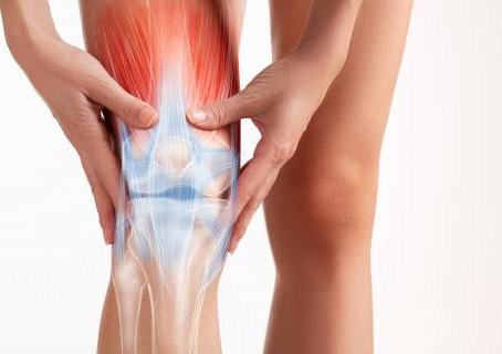 ¿Qué son los desgarros musculares?