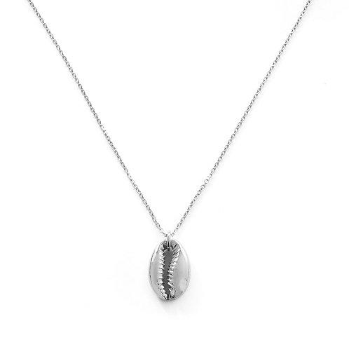 Big shell silver
