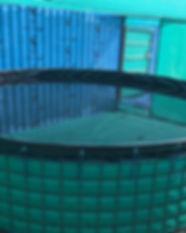 Biofloc Tank_View-2.jpg
