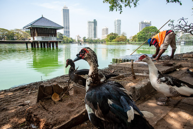 Colombo City - super ugly