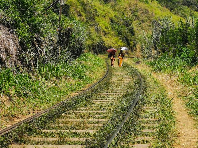 Train tracks around Ella