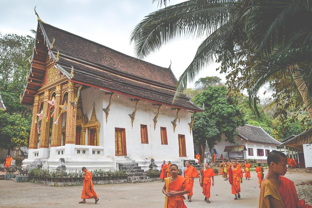 buddhism school in Luang Prabang