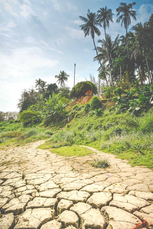 dry season in Luang Prabang