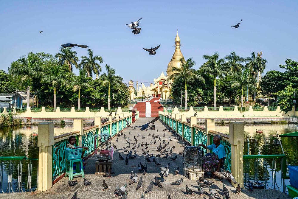 Yangon, Eingang zum Tempel