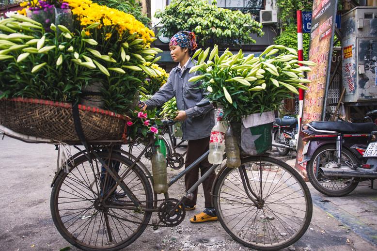 Hanoi flower seller