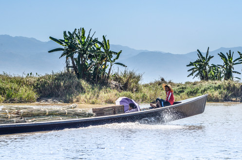 locals transporting bamboo on Inle Lake