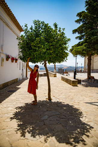 Little tree and woman in red