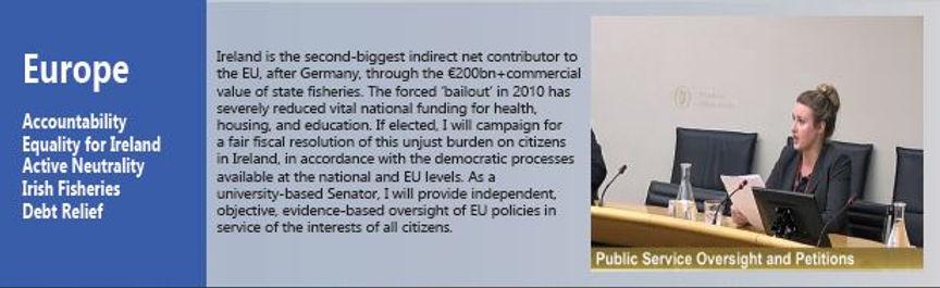 Seanad 2020 EU Equality Proposals.JPG
