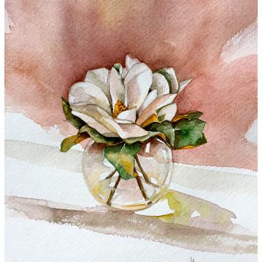 Magnolia Blossem.jpg