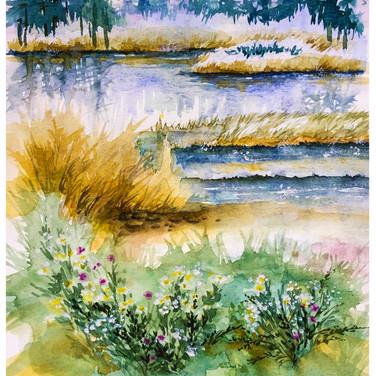 A Summer Marsh.jpg