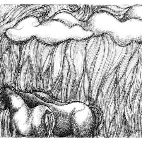Windy Nights, Cloudy Days