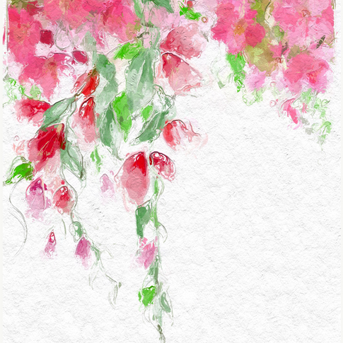 Summery Floral Vines.PNG