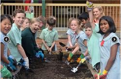 April 2016: Planting Day