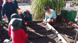 EcoGarden Teaching