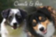 Ava and Charlie.jpg