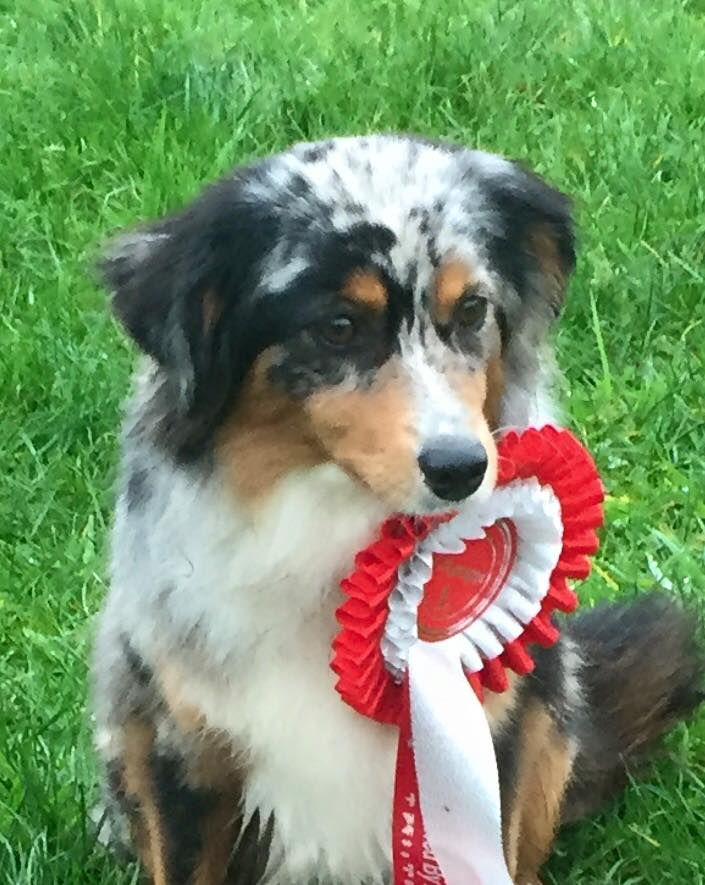 Birdie wins her very 1st competition