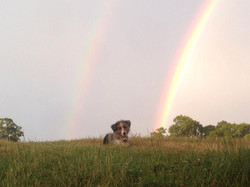 The pot of gold at the end?