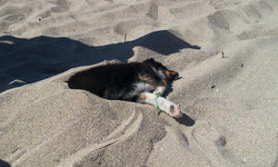 I do like this sand