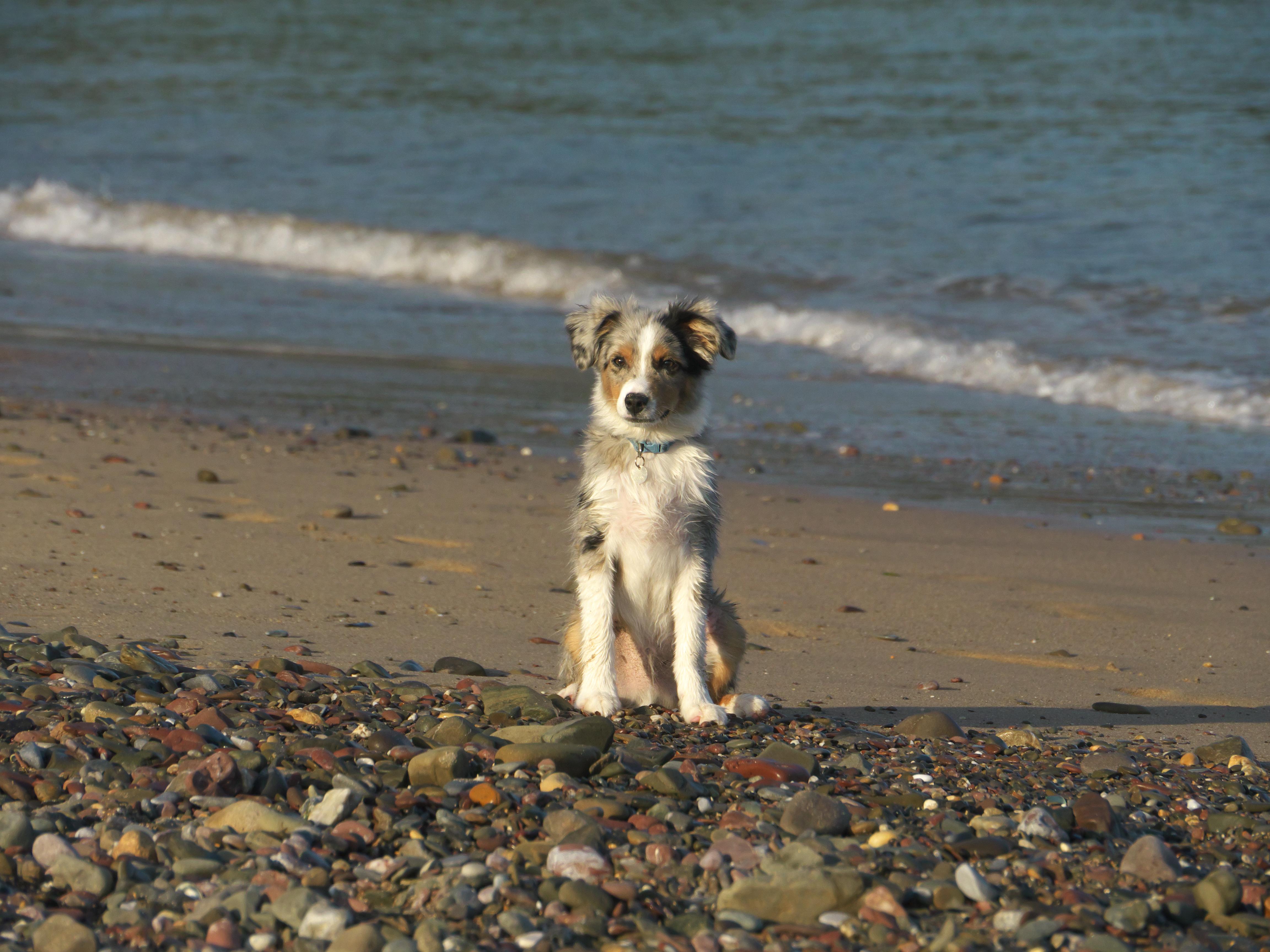 Enjoying a trip to the beach