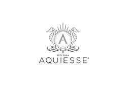 Aquesse-Logo