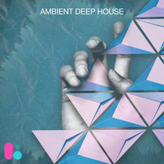 AMBIENT DEEP HOUSE- LSNG126