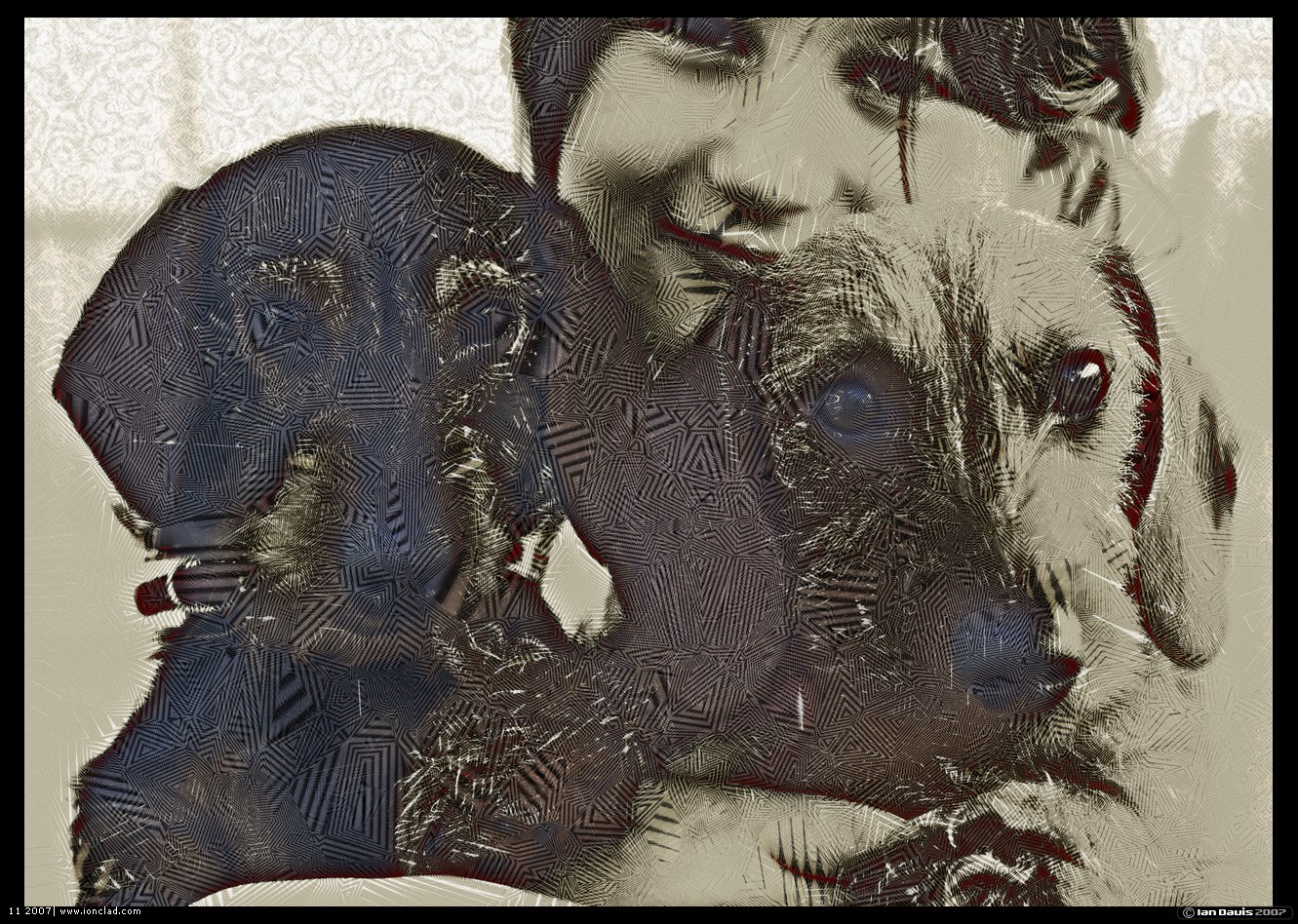 Flickr - sarah and puppies_web