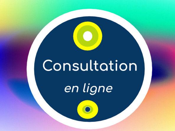Consultation-en-lignePG_Sante%C3%8C%C2%81_Naturopathe_Logo-560x420-fonce%C3%8C%C2%81_edited.jpg