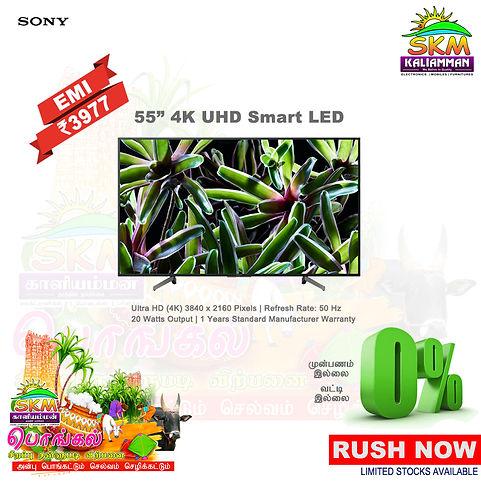 Pongal Sony 55.jpg