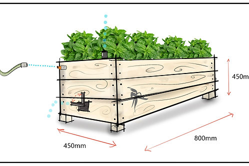 Endemic Self Watering Wicking Beds