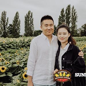 Sunflower Festival- August 10th