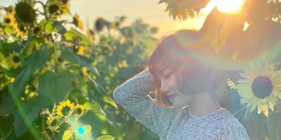 5:00 pm, Aug 15th - Richmond Sunflower Viewing