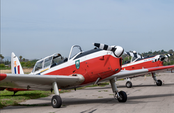 Historic Aircraft Day at Flabob Airport