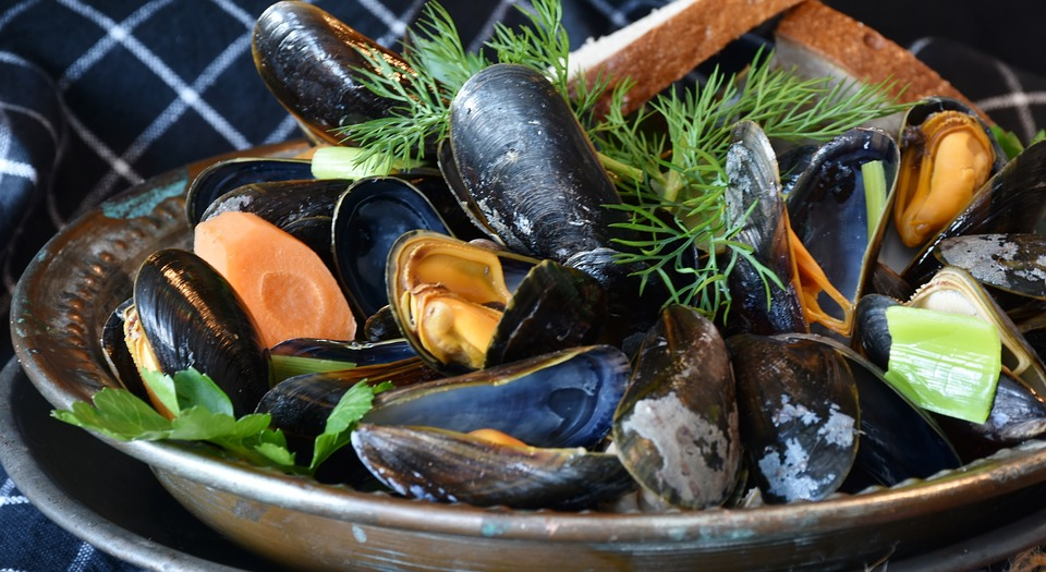 mussels-3148452_960_720