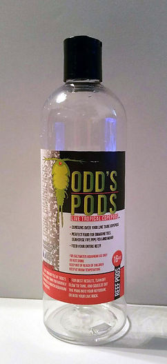live tisbe copepods, live copepods, copepods, copepods for sale, live copepods for sale