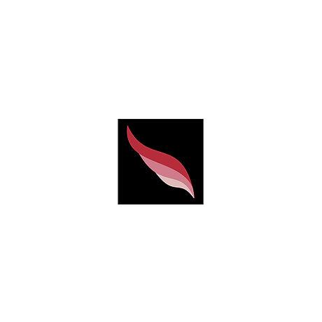 Dream Logo Updated.jpg