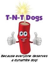 T-N-T Dog Training
