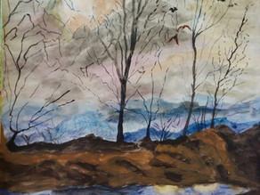 Hope After Bushfires- Laila Khan