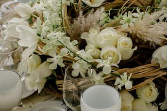 Mexican White-2020-04-02-17-38-50 2.jpg