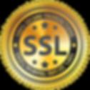 ssl-certificate4-300x300.png