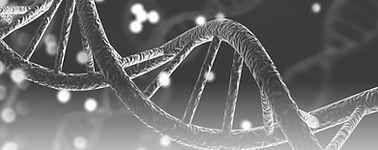 DNA_3d.jpg