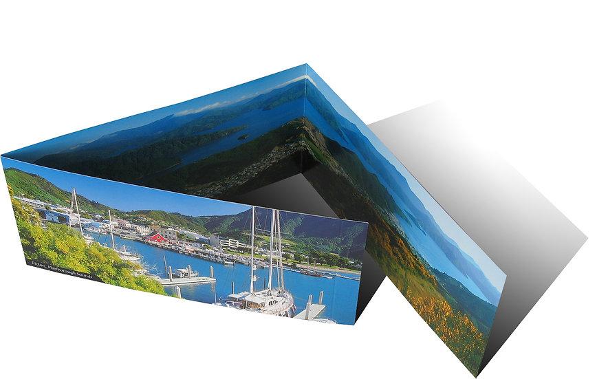 Picton card