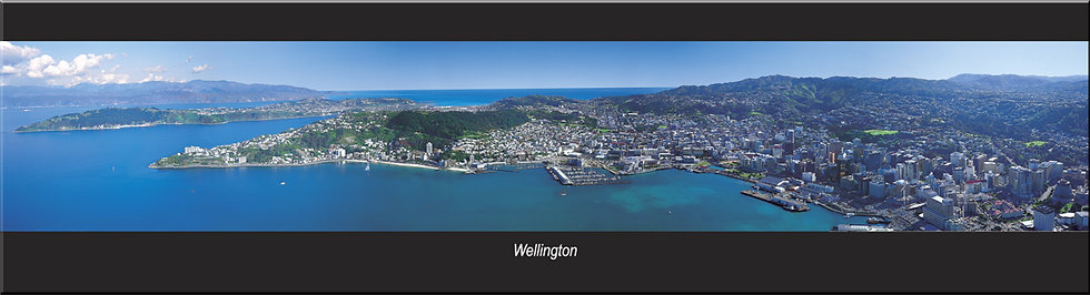 Wellington magnet